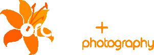 Orange Flow Photography